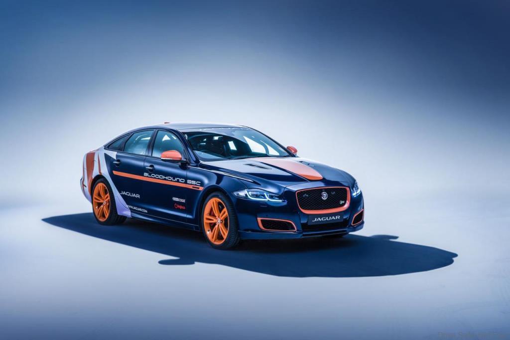 Jaguar-Rapid-response-3