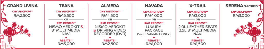04 CNY 2017 Promotion Campaign