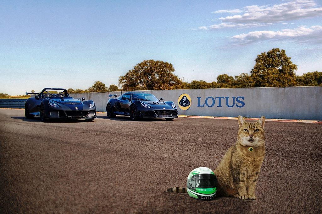 lotus-pet-lid2_1600